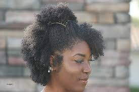 black rod hairstyles for 2015 awesome natural hairstyles for black women with medium length hair