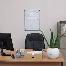 Best Plant For Office Desk 15 Best Office Desk Plants That Don T Need Space Balcony Garden Web