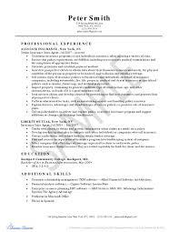 Ad Operations Resume Advisor Resume Insurance Accounting Samples Fina Peppapp