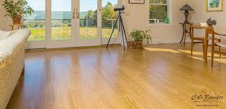 solid bamboo flooring fossilized strand cali bamboo