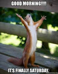 Saturday Morning Memes - good morning it s finally saturday happy squirrel make a meme