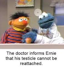Ernie Meme - 102 best bert and ernie fun images on pinterest funny images