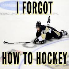 Hockey Memes - hockey memes i forgot how to hockey picsmine