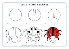 learn to draw a ladybug 460 2 jpg