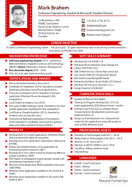 Best Resumes Format by Examples Of Resumes Resume Visual Professional Cv Template