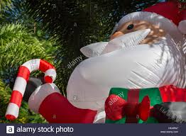 giant inflatable santa claus in front of palm trees in residential