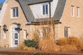 category ornamental grass k state horticulture newsletter