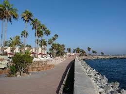 estero beach ensenada baja california tidal treasures