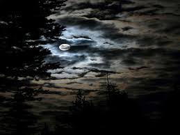 sky halloween full moon clouds sky night trees wallpaper iphone 5