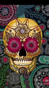 41 best skull images on skulls