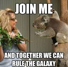 Be Strong Meme - the eucalyptus is strong in this one meme picture webfail