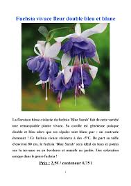 fleurs vivaces rustiques calaméo catalogue plantes annuelles plantes vivaces