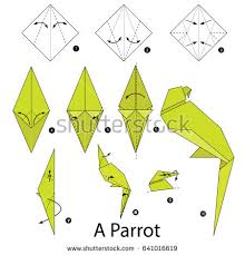 Step By Step Origami For - origami parrot step step how make stock