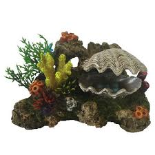 aquarium ornaments backgrounds kellyville pets