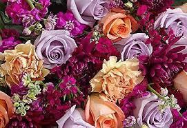 fresh flowers 12 lasting cut flowers proflowers