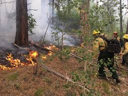 Wildfire Northern Colorado by Update Boggy Draw Fire Outside Dolores Grows