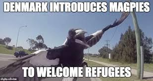 Denmark Meme - image tagged in refugees denmark imgflip