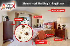 How To Identify Bed Bugs Bed Bug Awareness Week Azex Pest Solutions Bed Bug Heat And