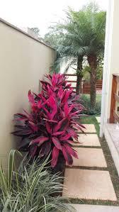 the most poisonous plants in australia hipages com au 25 unique tropical garden design ideas on pinterest back garden