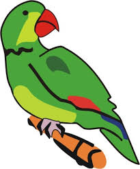 green parrot coloring pages kids color print
