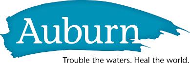 auburn seminary trouble the waters heal the world