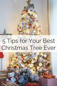 how to your best tree the happier homemaker