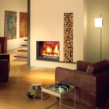 astonishing fireplace inset images best idea home design