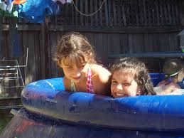 backyard pool free range kids
