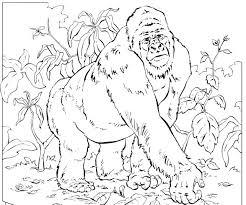 coloring page of gorilla mountain gorilla coloring pages coloring pages for kids sensory