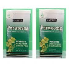 obat herbal purwoceng toko obat kuat subang dinastiherbal com