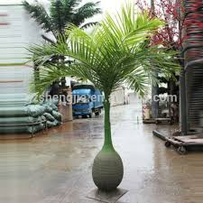 lxy081909 bottle shape cheap artificial trees ornamental palm tree