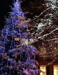 solar christmas tree lights christmas tree lighting ideas outside tree lights light ideas