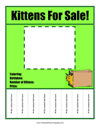 kittens for sale flyer png