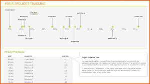 Resume Timeline Template 13 Microsoft Timeline Template Survey Template Words