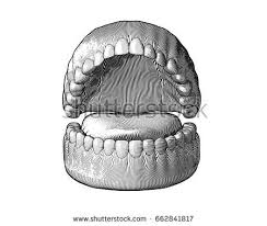human mouth stock images royalty free images u0026 vectors shutterstock