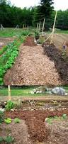 garden pathways what do you use homestead forum at permies