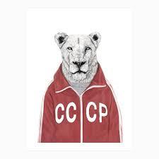 100 lion decor home 25 best lion poster ideas on pinterest