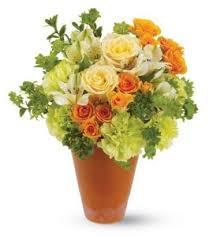 flower delivery columbus ohio terracotta flowers arrangement griffins floral deisgn