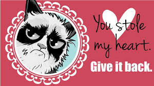 Grumpy Cat Meme Valentines Day - valentine s day memes for the anti valentine s day girls