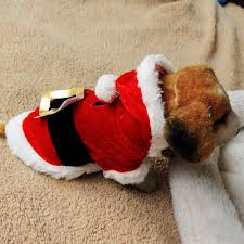 funny thanksgiving dog pictures online buy wholesale dog christmas clothes from china dog