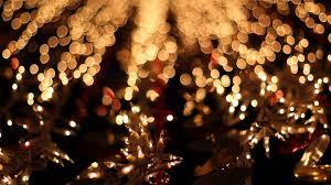lights christmas christmas fairy lights animals that i christmas