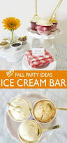 Cold Stone Creamery Winter Garden Fl - cold stone creamery about our ice cream facts birthday pin