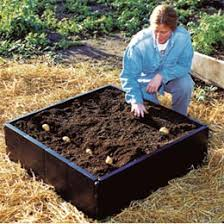 Patio Potato Planters Patio Planters U0026 Containers Patio Potato Barrel Patio Raised Bed