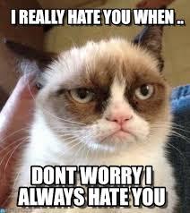 Hate Meme - i really hate you when grumpy cat reverse meme on memegen