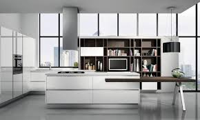 Modern Kitchen Design Pics Modern Kitchen Cabinets European Cabinets Design Studios
