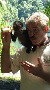 best places to see monkeys and sloths in costa rica