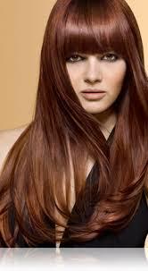 copper and brown sort hair styles 5c brilliant brunette medium copper brown precision foam