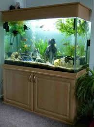 simple ways to build aquarium stand design plan nytexas