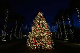 christmas tree with white lights and red bows christmas tree at night with red bows stock photo image of