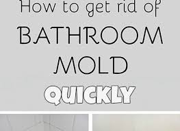 Best Way To Remove Mould From Bathroom Ceiling How To Remove Mould From Bathroom Ceiling Pundaluoyatmv
